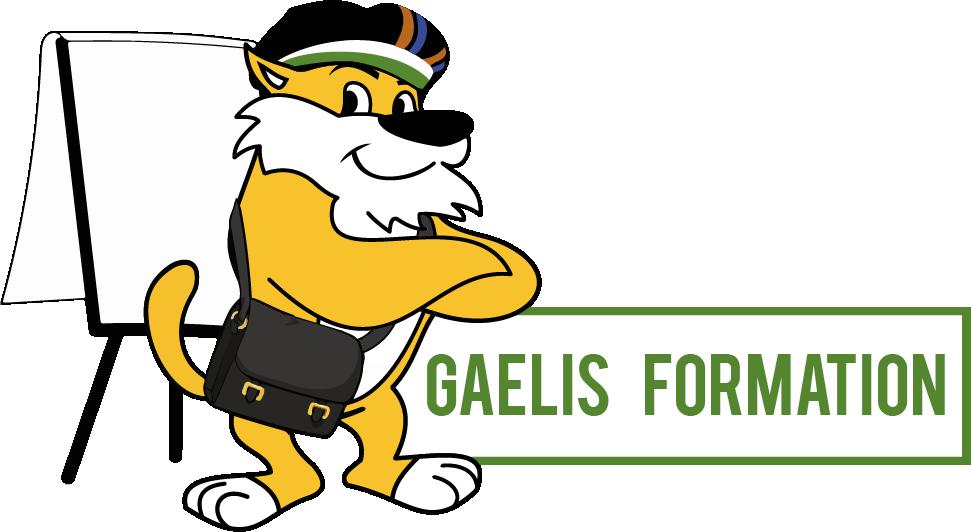 GAELIS Formation